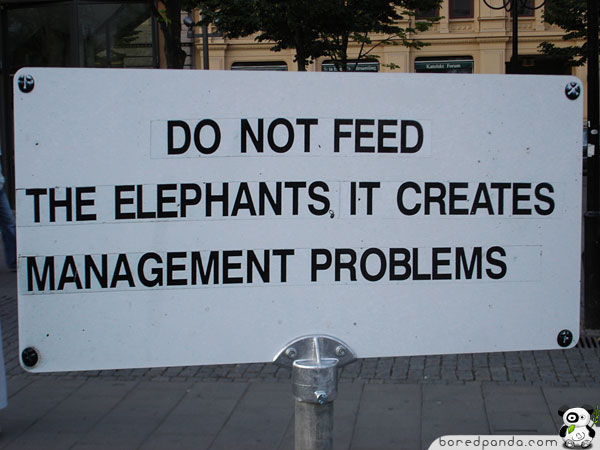 Funny Elephant Sign
